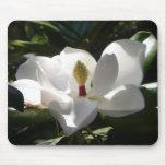 magnolia flower tree flowers photography mousepad