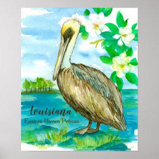 Magnolia Flowers Eastern Brown Pelican Poster