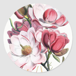 Magnolia Flowers Stickers