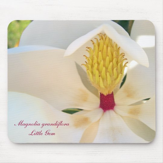 Magnolia grandiflora 'Little Gem' Mouse Mat
