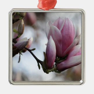 magnolia in bloom christmas ornament