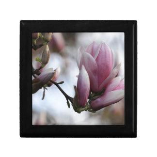 magnolia in bloom small square gift box