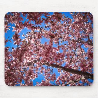 magnolia mousepads