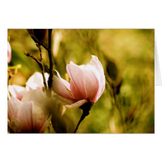 Magnolia Note Card