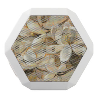 Magnolia Simplicity Cream