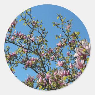Magnolia sky classic round sticker