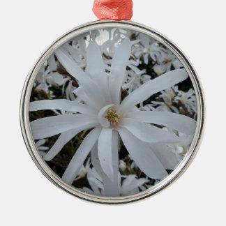 Magnolia star Silver-Colored round decoration