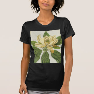 Magnolia Thompsoniana T-Shirt