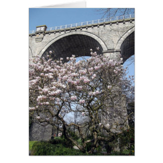 Magnolia Tree blooms by viaduct Card