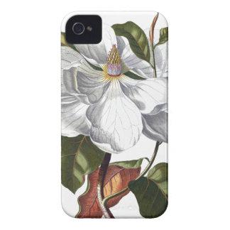 Magnolia vintage illustration Case-Mate iPhone 4 case