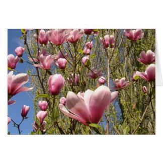 Magnolias in Bloom Card