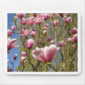 Magnolias in Bloom Mouse Pad
