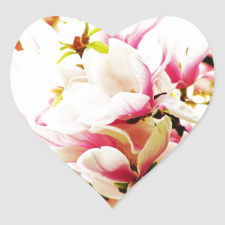 Magnolias in the sun heart sticker
