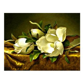 Magnolias on Gold Velvet Cloth, fine art painting Post Cards