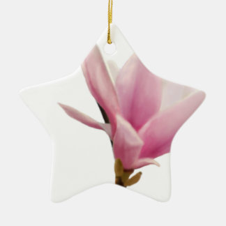 Magnolie Christmas Ornaments