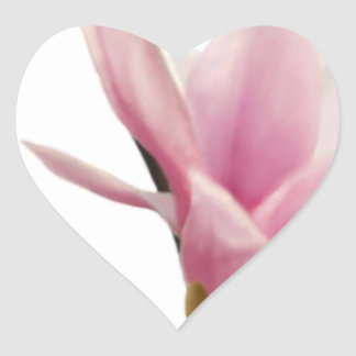 Magnolie Heart Sticker