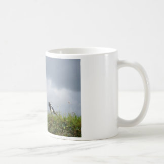 Magpie and wild flowers. coffee mug