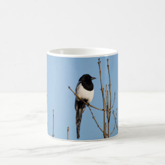 Magpie Coffee Mug