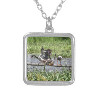 MAGPIE GEESE QUEENSLAND AUSTRALIA ART EFFECTS SQUARE PENDANT NECKLACE