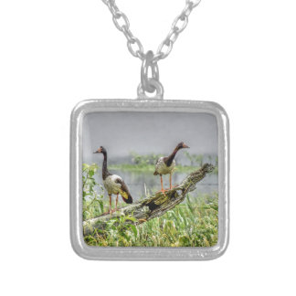 MAGPIE GEESE RURAL AUSTRALIA ART EFFECTS SQUARE PENDANT NECKLACE