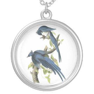 Magpie Jay, John Audubon Necklaces