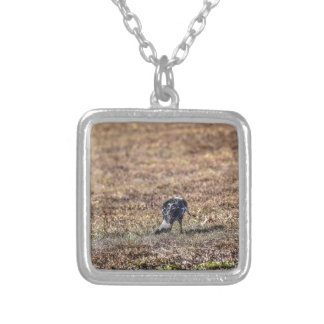 MAGPIE QUEENSLAND AUSTRALIA ART EFFECTS SILVER PLATED NECKLACE