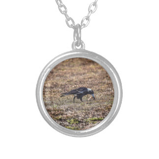 MAGPIE RURAL QUEENSLAND AUSTRALIA ART EFFECTS SILVER PLATED NECKLACE