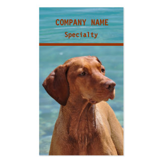 Magyar Vizsla Dog Business Cards Standard Business Cards