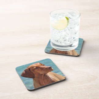 Magyar Vizsla Dog Drink Coaster