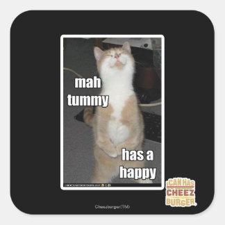 Mah tummy has a happy square sticker
