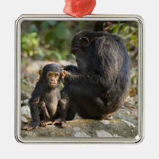 Mahale Mountains National Park, Tanzania Christmas Ornament