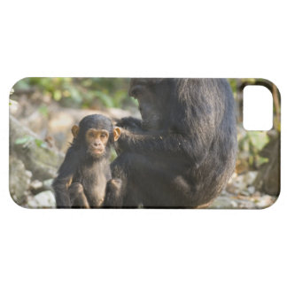 Mahale Mountains National Park, Tanzania iPhone 5 Covers