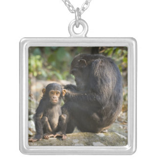 Mahale Mountains National Park, Tanzania Silver Plated Necklace