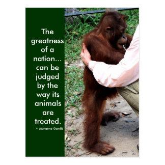 Mahatma Gandhi's animal quote Postcard