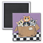 Mail Order Kittens in a Box Painting Square Magnet