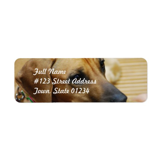 Mailing Label Template 2 - Customised Return Address Label