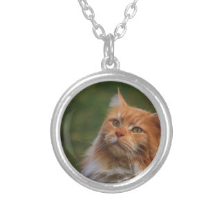MainCoon Katze Round Pendant Necklace