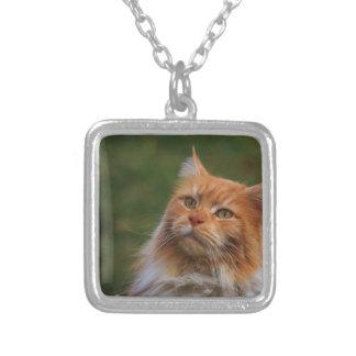 MainCoon Katze Square Pendant Necklace