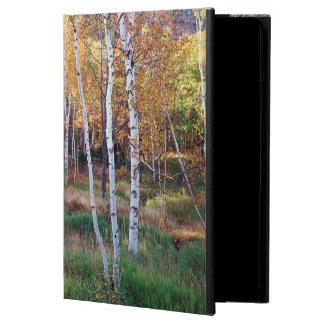 Maine, Acadia National Park, Autumn iPad Air Cover