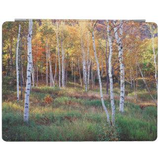 Maine, Acadia National Park, Autumn iPad Cover