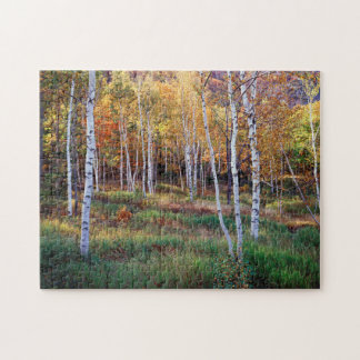 Maine, Acadia National Park, Autumn Jigsaw Puzzle