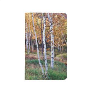 Maine, Acadia National Park, Autumn Journal