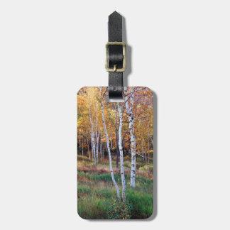 Maine, Acadia National Park, Autumn Luggage Tag