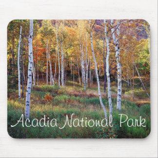 Maine, Acadia National Park, Autumn Mouse Mat
