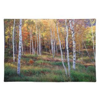 Maine, Acadia National Park, Autumn Placemat