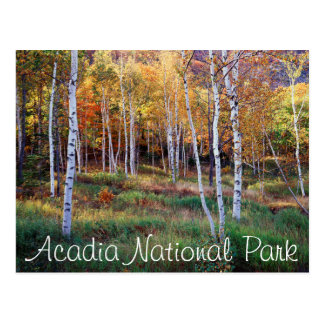 Maine, Acadia National Park, Autumn Postcard
