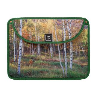 Maine, Acadia National Park, Autumn Sleeve For MacBook Pro