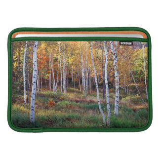Maine, Acadia National Park, Autumn Sleeves For MacBook Air