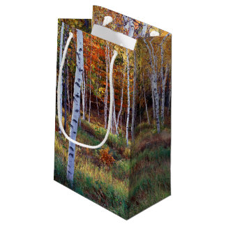 Maine, Acadia National Park, Autumn Small Gift Bag