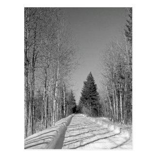 Maine_Black+White_44 Postcard